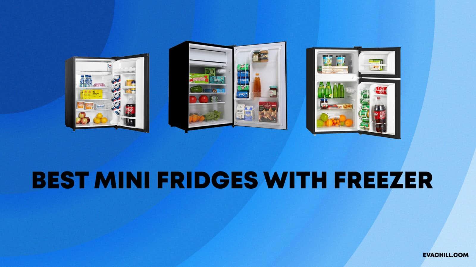 Best Mini Fridges with Freezer