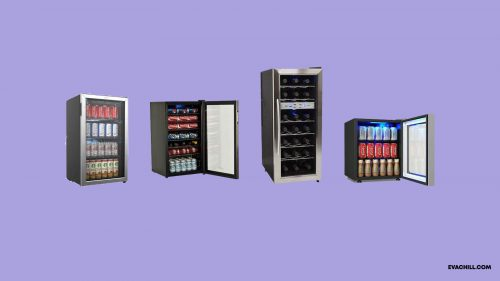 10 Best Beverage Coolers for Hot Summers in 2020